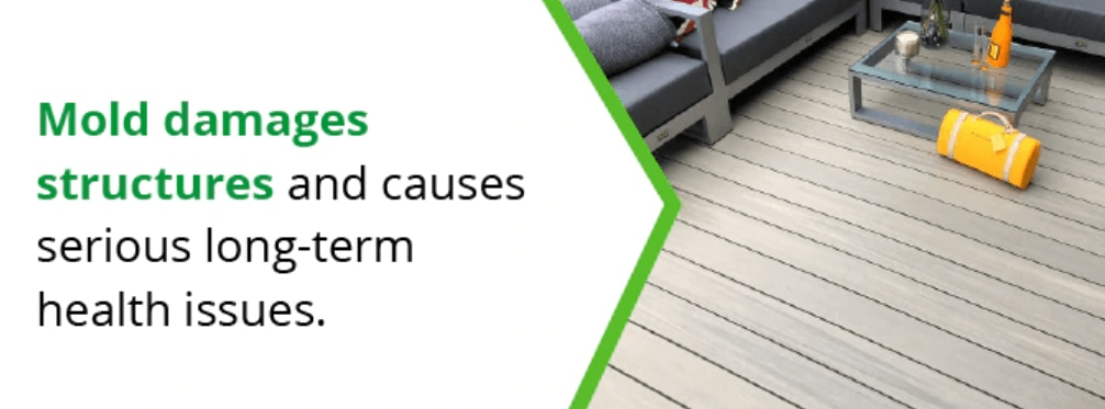 mold damages structures